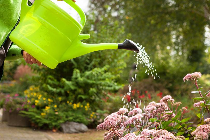 Gartenpflege im Frühjahr